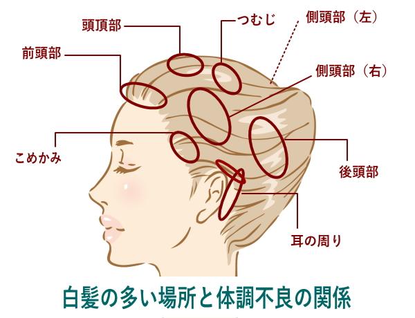 と 痛い 頭 頂部 押す